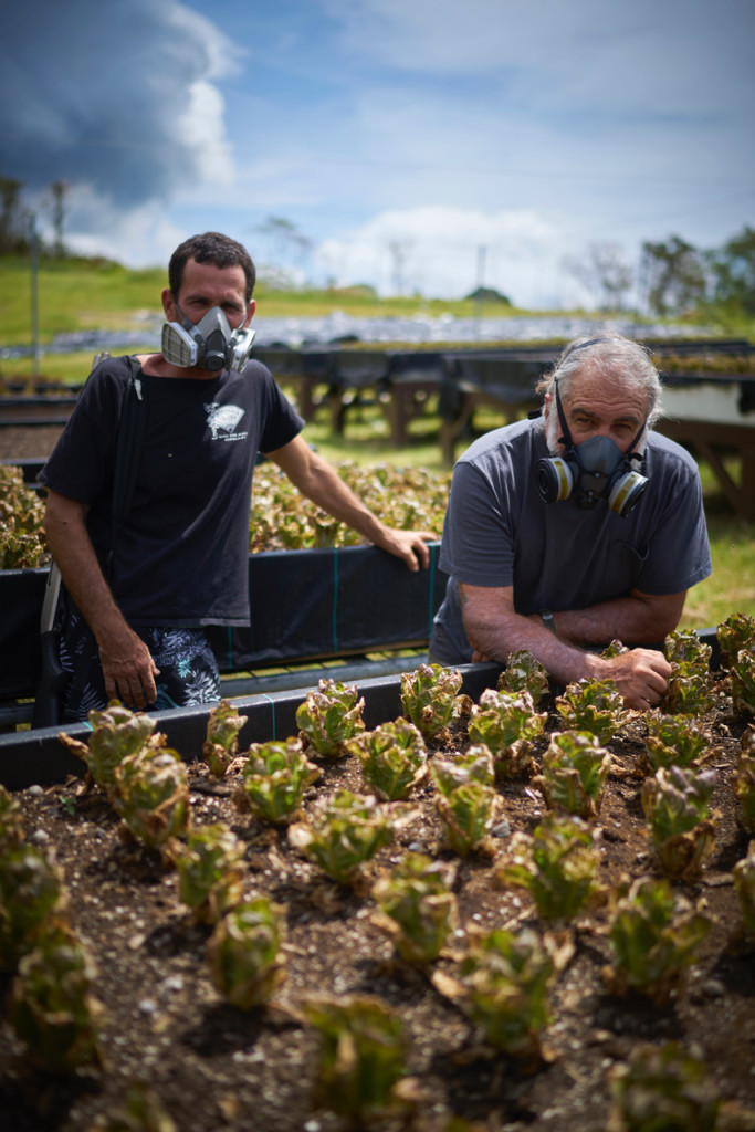 May 15, 2018. Kilauea Volcano, Hawaii. Organic produce at the 20 acre Johnson Family Farm has been destroyed due to the toxic air quality near the Kilauea Volcano. Pictured is Braha and his father Greg Johnson on the farm. Photo copyright John Chapple / www.JohnChapple.com